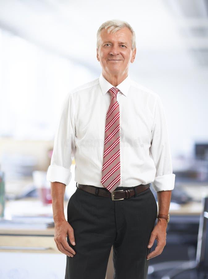 Homem de negócios superior executivo fotos de stock