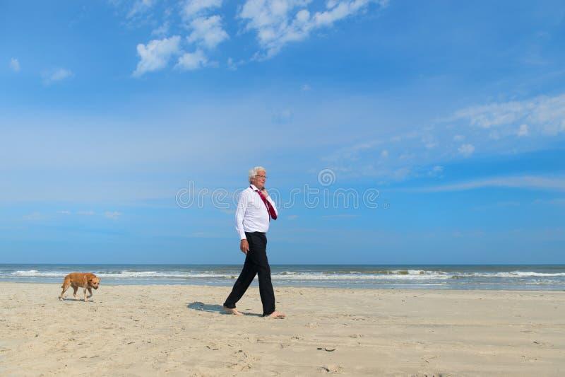 Homem de neg?cio com o c?o na praia imagem de stock
