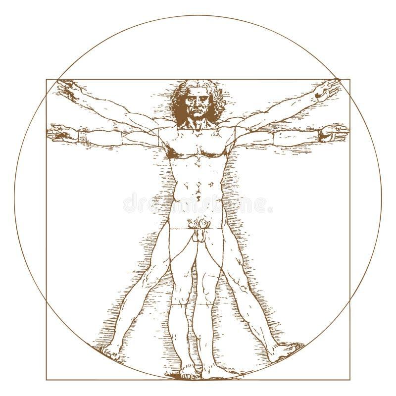 Homem de Vitruvian por Leonardo Da Vinci ilustração do vetor