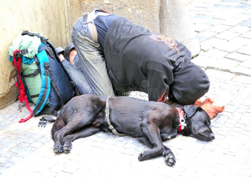 Homem desabrigado com um cão imagem de stock