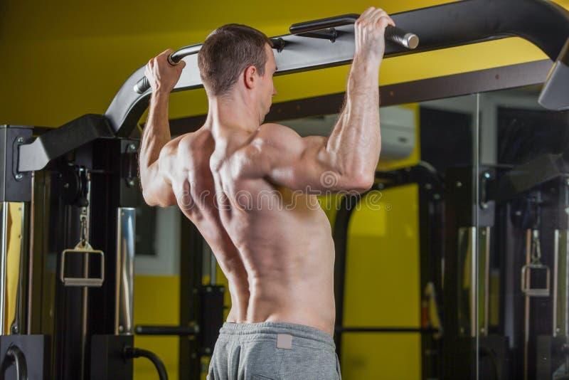 Homem do atleta do músculo no gym que faz elevações Treinamento do Bodybuilder na ginástica fotos de stock royalty free