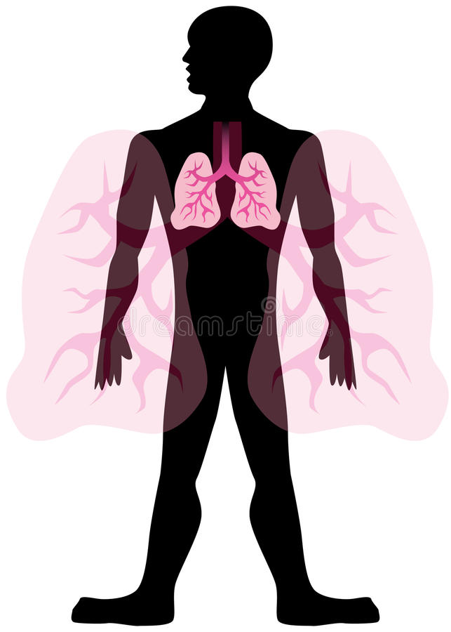 Homem do pulmão ilustração royalty free