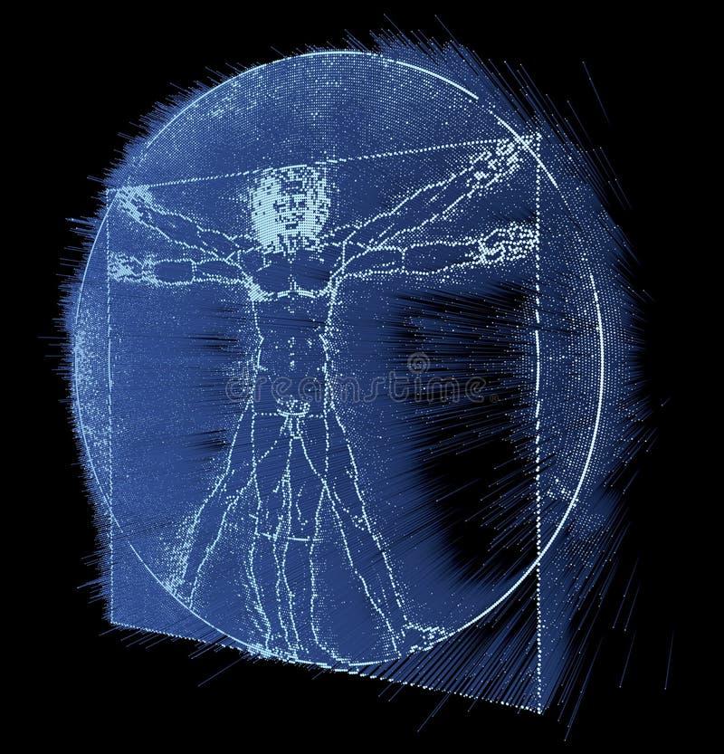 Homem do Vitruvian de Leonardo da Vinci, homo Quadratus ilustração royalty free