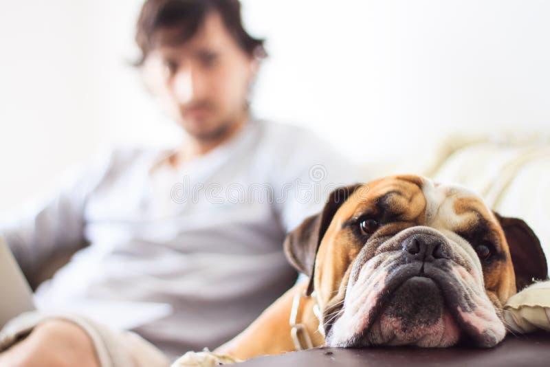 Homem e cão foto de stock