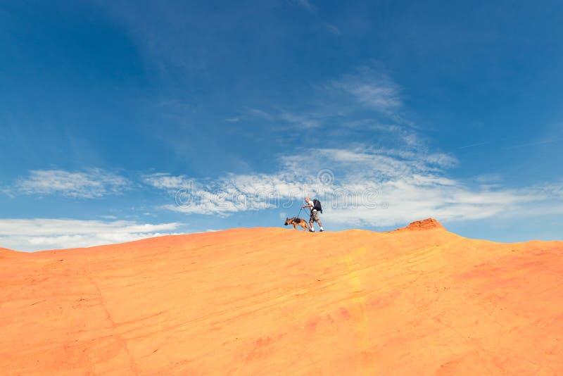 Homem e cão que andam na borda da duna imagem de stock royalty free