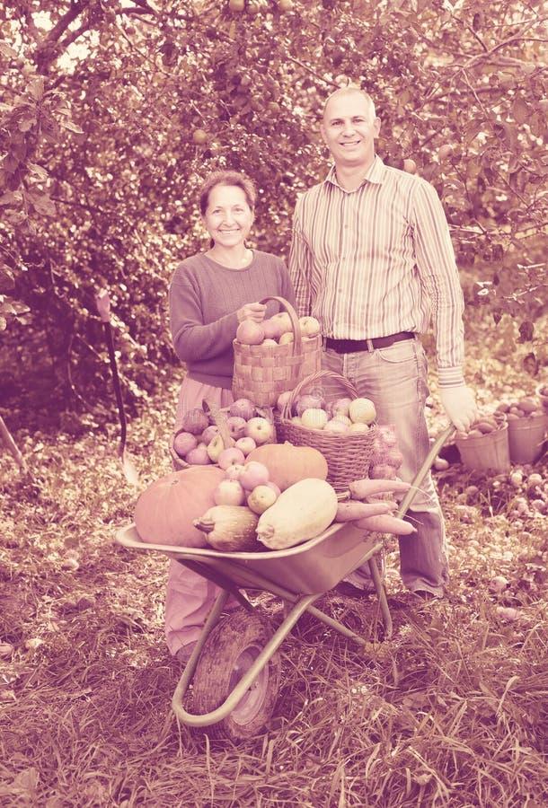 Homem e mulher com colheita foto de stock