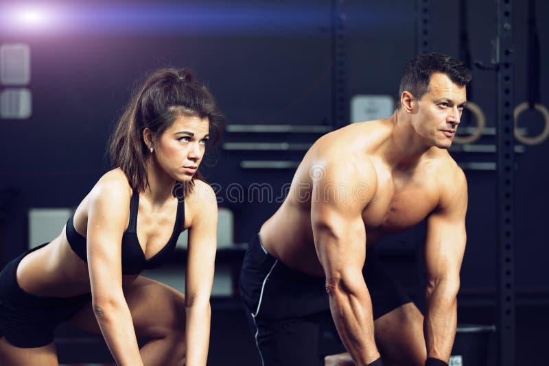 Homem e mulher do treinamento da aptidão fotografia de stock