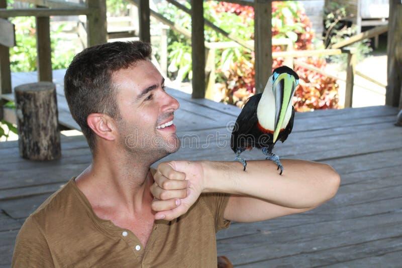 Homem e seu pássaro domesticado do tucano foto de stock