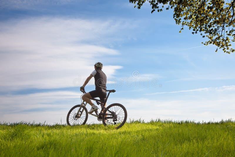 Homem em uma bicicleta em um campo foto de stock royalty free