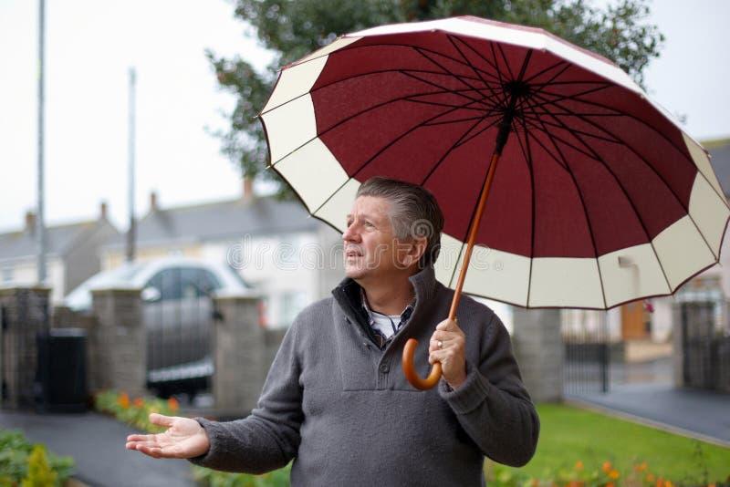 Download Homem Fora Do Guarda-chuva Da Terra Arrendada Imagem de Stock - Imagem de jardim, chuva: 16850033