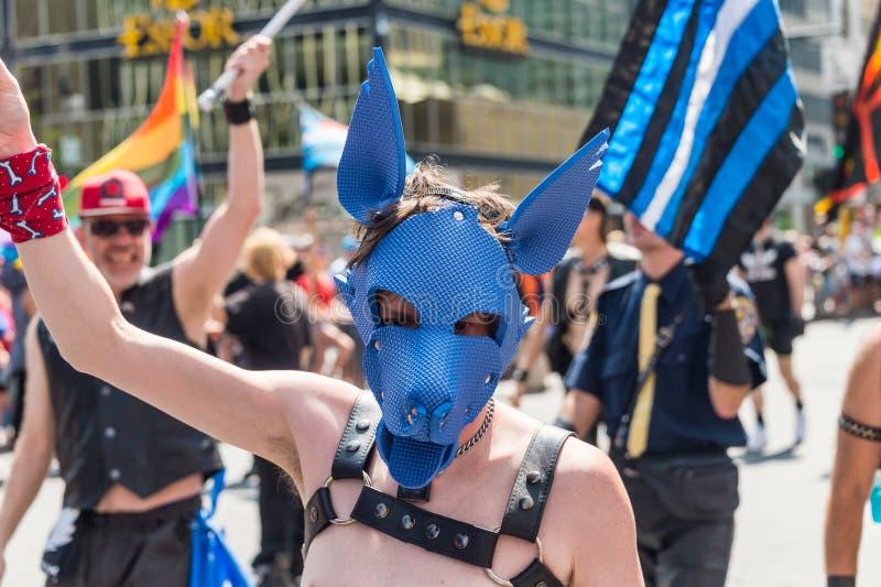 Homem gay que veste uma capa do escravo do cão imagem de stock