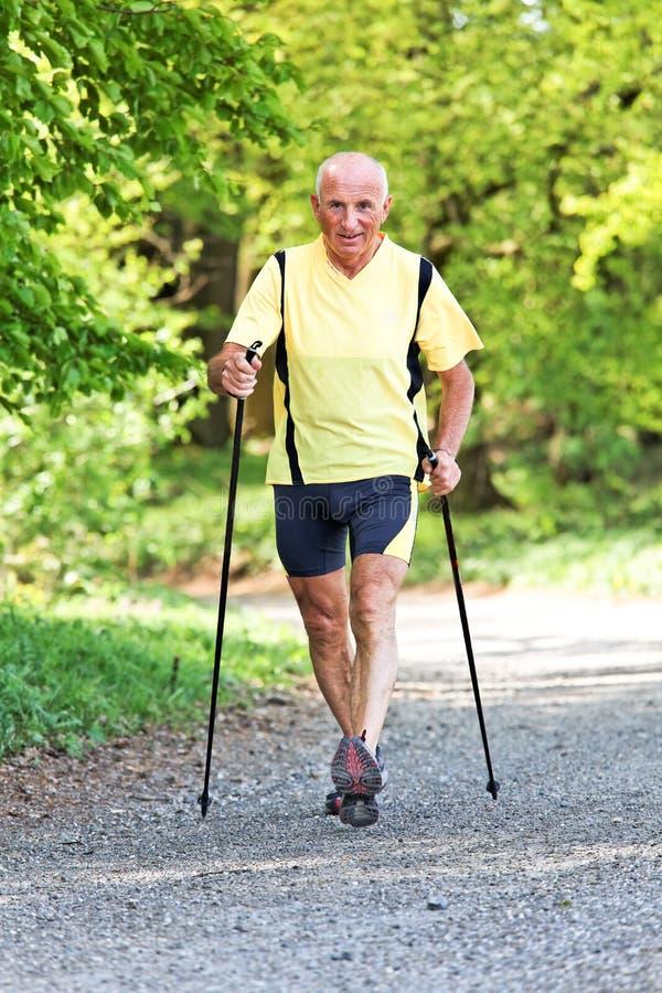 Homem idoso com passeio nórdico foto de stock