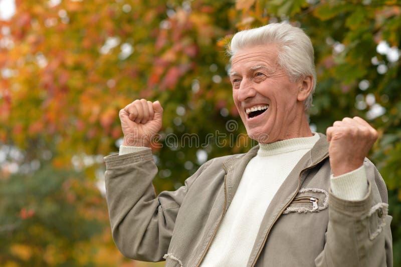 Homem idoso no parque imagem de stock