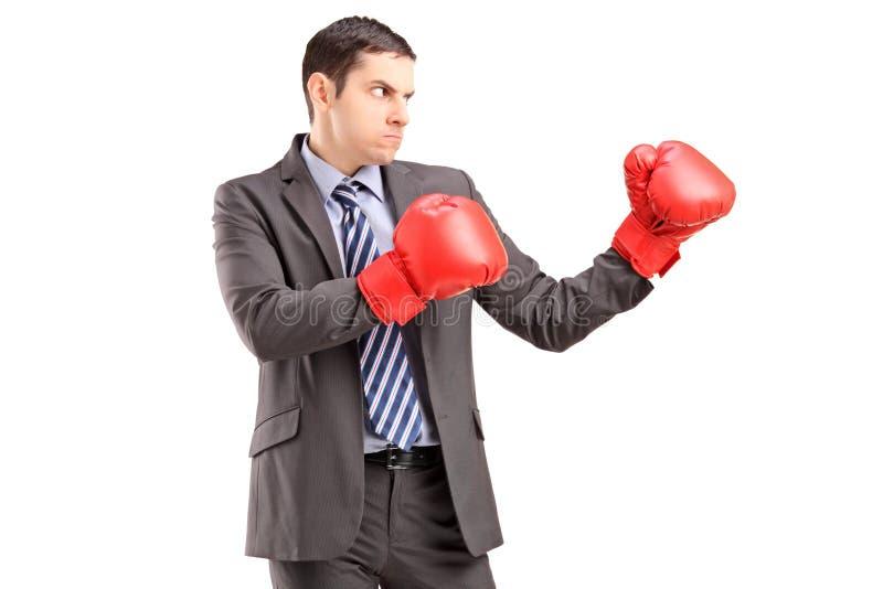 Homem irritado no terno com as luvas de encaixotamento vermelhas prontas para lutar fotos de stock royalty free