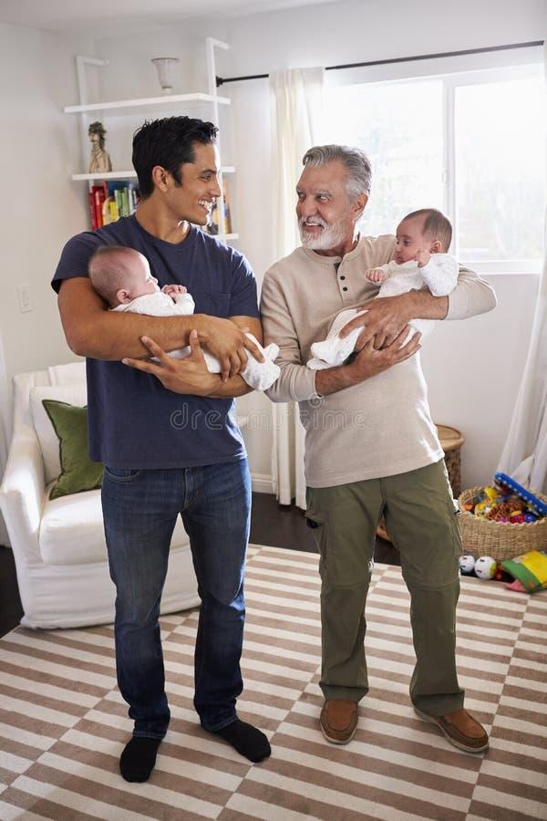 Homem latino-americano novo e seu pai superior que guardam seus dois bebês em casa, vertical fotos de stock