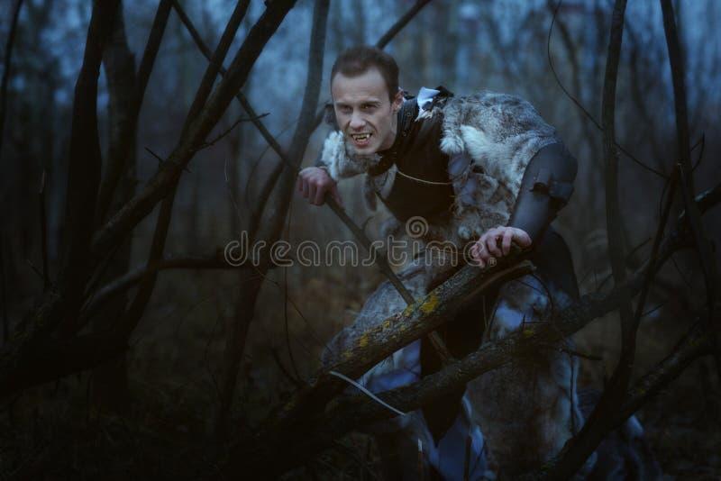 Homem-lobo com os colmilhos na noite fotografia de stock