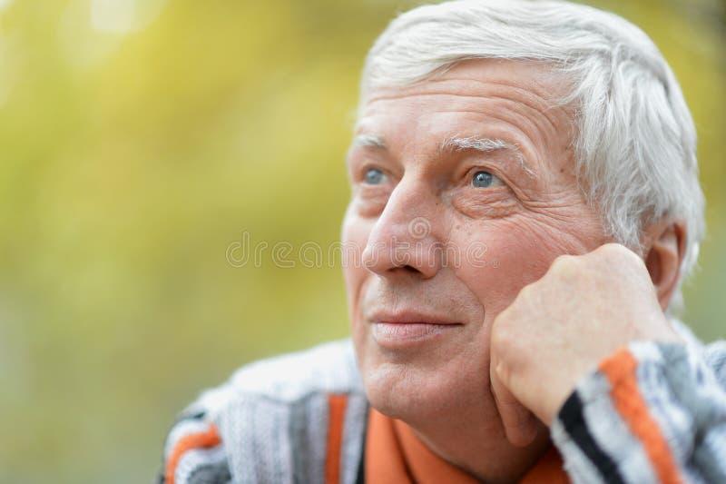 Homem maduro fotografia de stock
