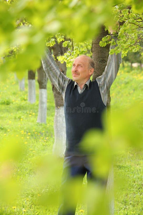 Homem maduro com mãos levantadas no jardim fotografia de stock royalty free