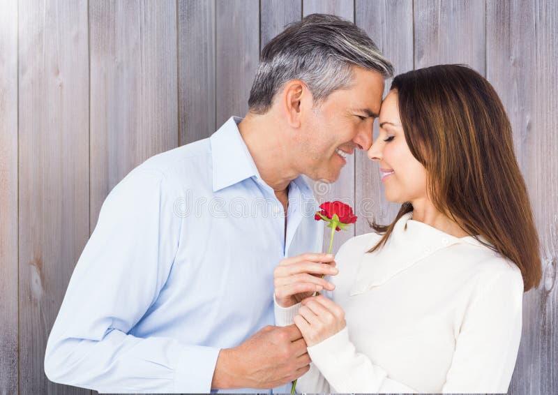 Homem maduro que dá a rosa do vermelho à mulher foto de stock royalty free