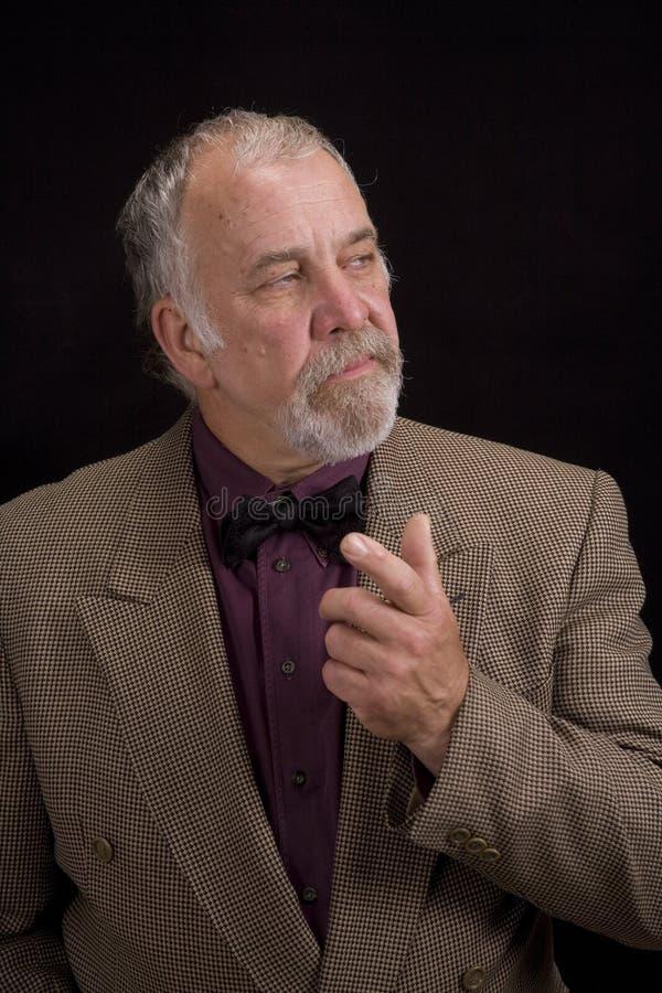 Homem mais idoso de Distinguised fotografia de stock royalty free
