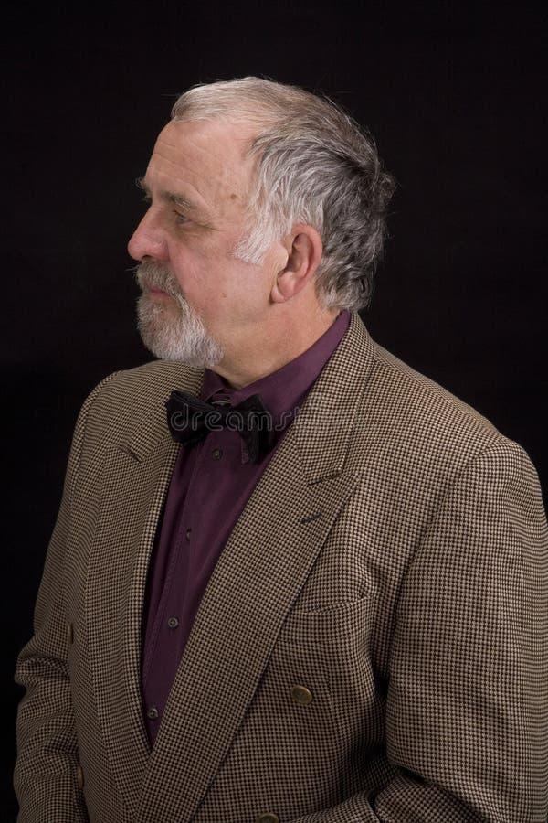 Homem mais idoso de Distinguised fotos de stock royalty free