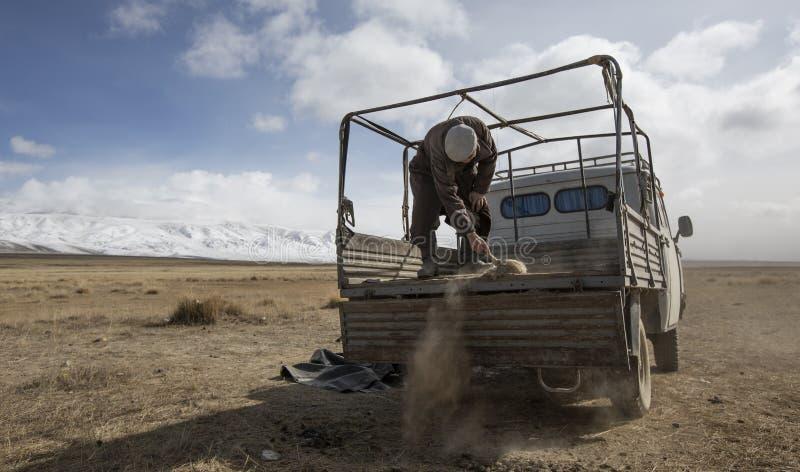 Homem Mongolian do nômadas que limpa a parte traseira de seu carro fotografia de stock royalty free