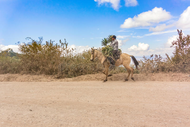 Homem, montando o cavalo na estrada de terra na Guatemala fotos de stock royalty free