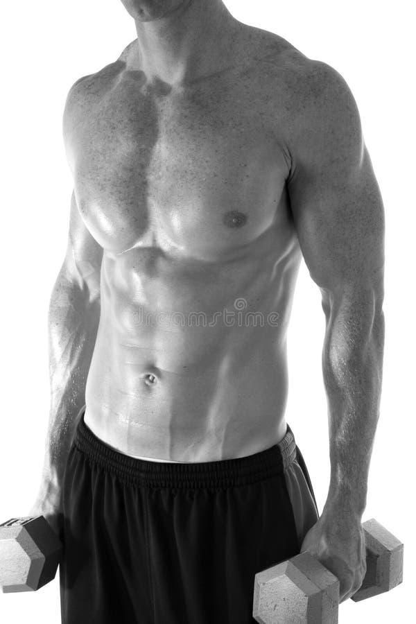 Homem muscular com pesos. fotos de stock