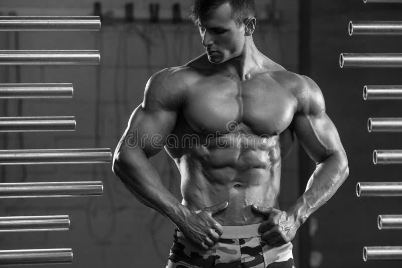 Homem muscular considerável que mostra os músculos, levantando no gym Abs masculino forte do torso, exercício foto de stock