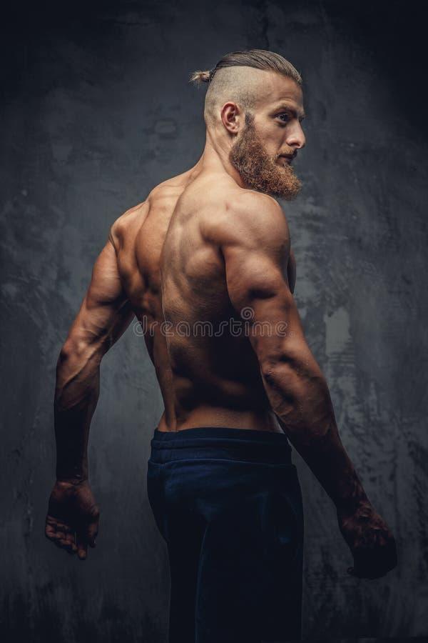 Homem muscular descamisado com a barba do seu para trás imagens de stock royalty free