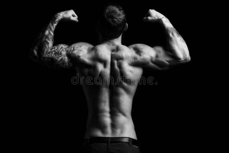 Homem muscular no estúdio imagens de stock royalty free