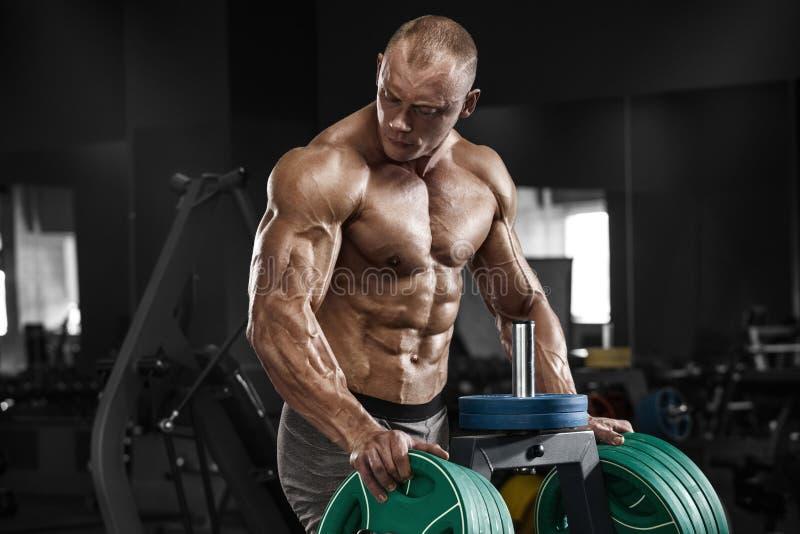 Homem muscular no gym, abdominal dado forma Abs despido masculino do torso do halterofilista, dando certo foto de stock