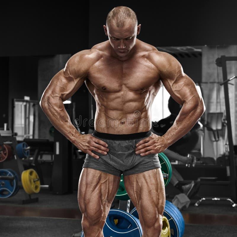 Homem muscular no gym, abdominal dado forma Abs despido masculino forte do torso, dando certo foto de stock