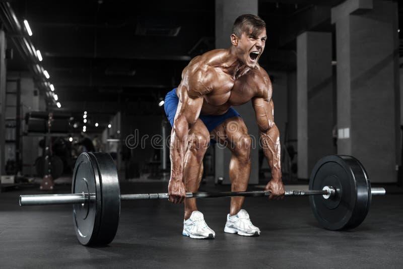 Homem muscular que dá certo no gym que faz exercícios, Abs despido masculino forte do torso foto de stock