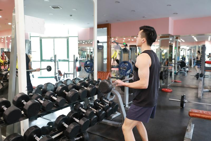 Homem muscular que dá certo no gym que faz exercícios com pesos nos bíceps, Abs despido masculino forte do torso imagens de stock