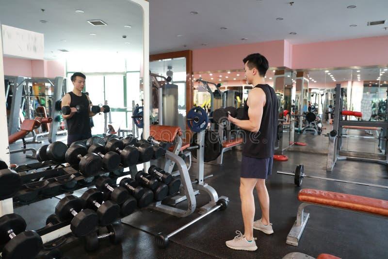 Homem muscular que dá certo no gym que faz exercícios com pesos nos bíceps, Abs despido masculino forte do torso fotos de stock royalty free