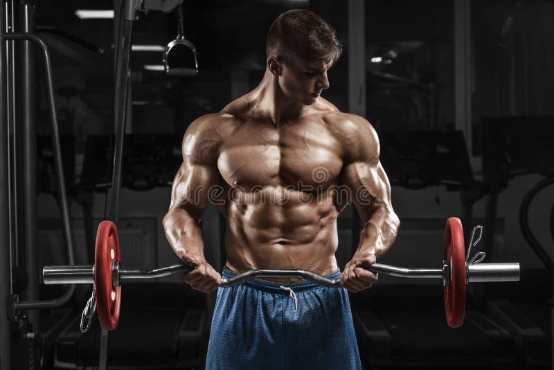Homem muscular que dá certo no gym que faz exercícios com barbell, Abs despido masculino forte do torso imagens de stock