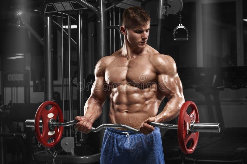 Homem muscular que dá certo no gym que faz exercícios com o barbell no bíceps, Abs despido masculino forte do torso fotografia de stock royalty free