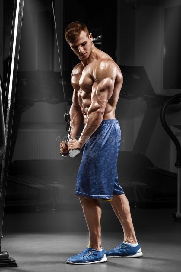Homem muscular que dá certo no gym que faz exercícios no tríceps, Abs despido masculino forte do torso imagens de stock