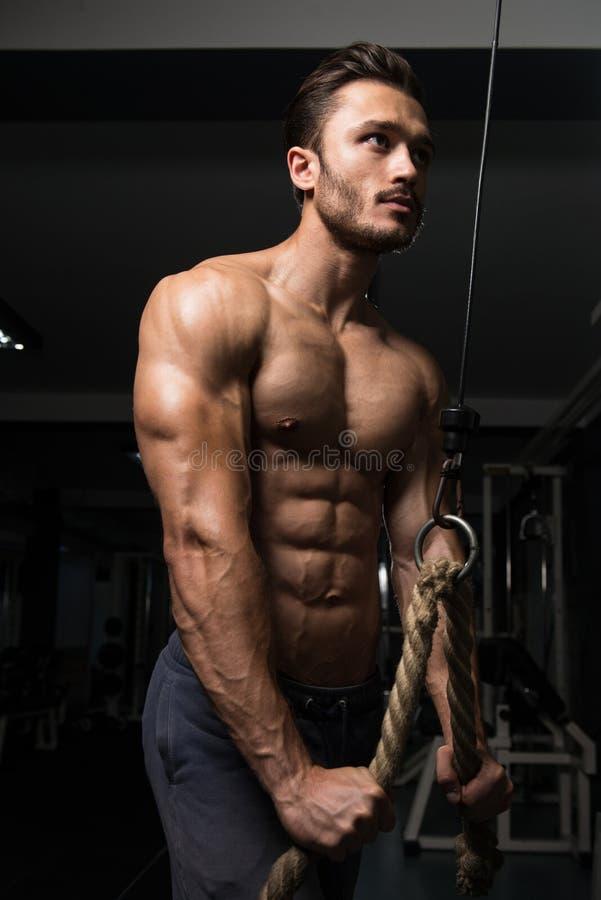 Homem muscular que exercita o tríceps imagem de stock