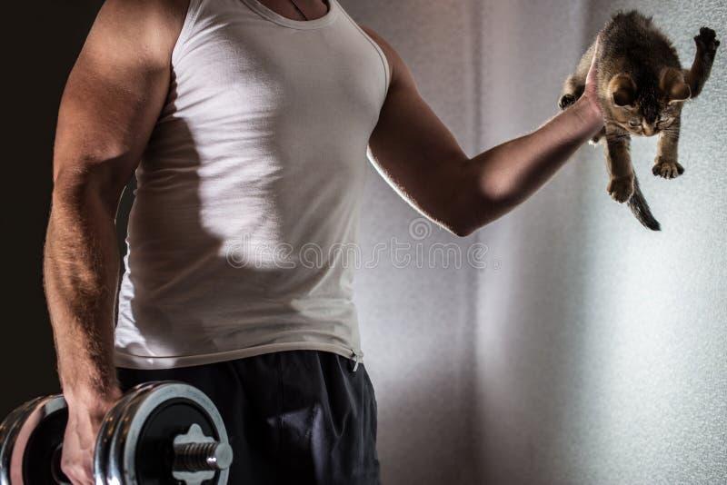 Homem muscular que faz o exercício com peso em um braço e em sua outra mão um gatinho bonito fotos de stock royalty free