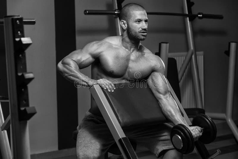 Homem muscular que faz o exercício pesado para o bíceps foto de stock royalty free