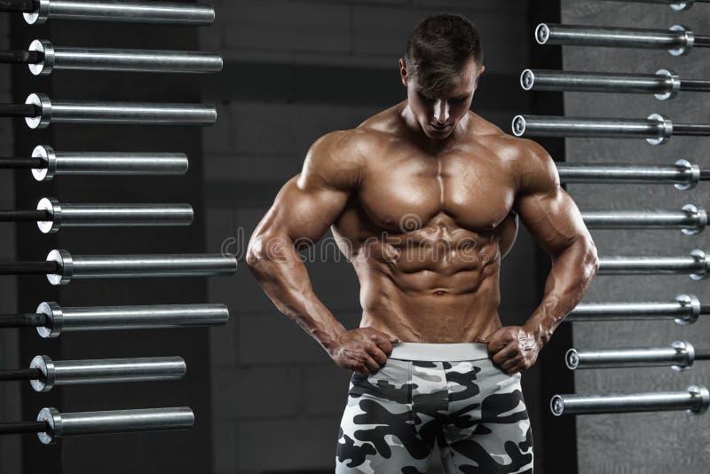 Homem muscular que mostra os músculos, levantando no gym Abs despido masculino forte do torso, dando certo imagem de stock royalty free