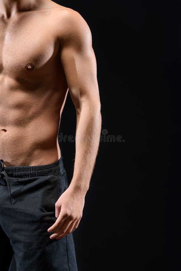 Homem muscular que mostra seu torso desencapado foto de stock