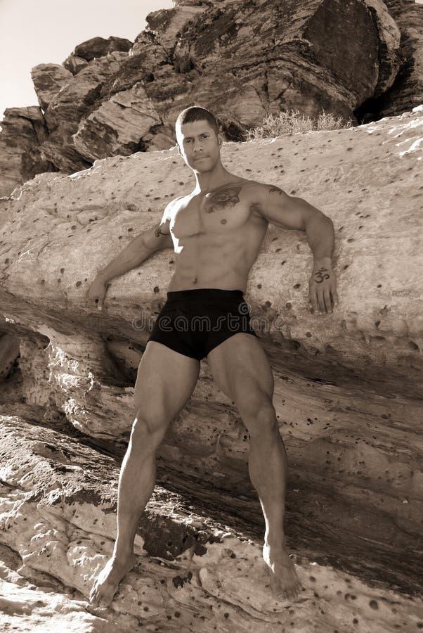 Homem muscular 'sexy'. fotografia de stock