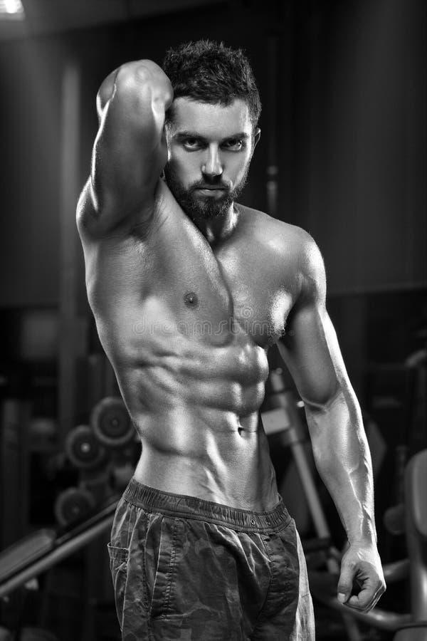 Homem muscular 'sexy' no gym, abdominal dado forma Abs despido masculino forte do torso, dando certo fotografia de stock