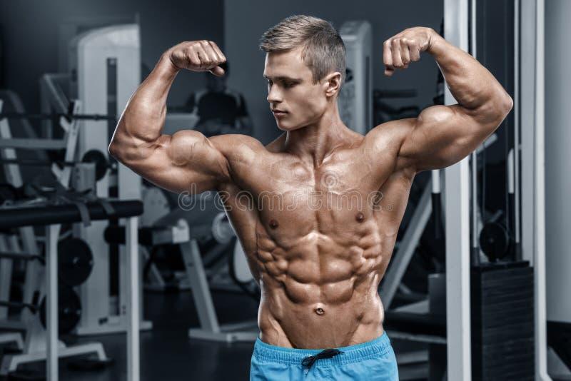 Homem muscular 'sexy' no gym que dá certo, abdominal dado forma Abs despido masculino forte do torso imagens de stock