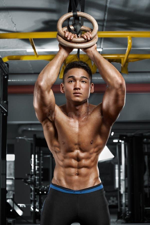 Homem muscular 'sexy' que levanta no gym, abdominal dado forma Abs despido masculino forte do torso, dando certo imagens de stock royalty free