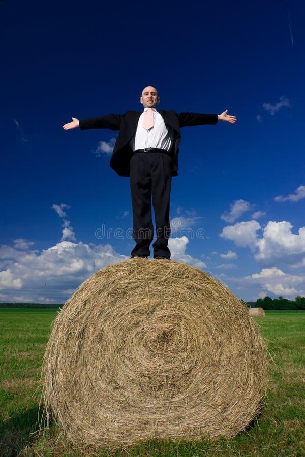 Homem na bala de feno foto de stock royalty free