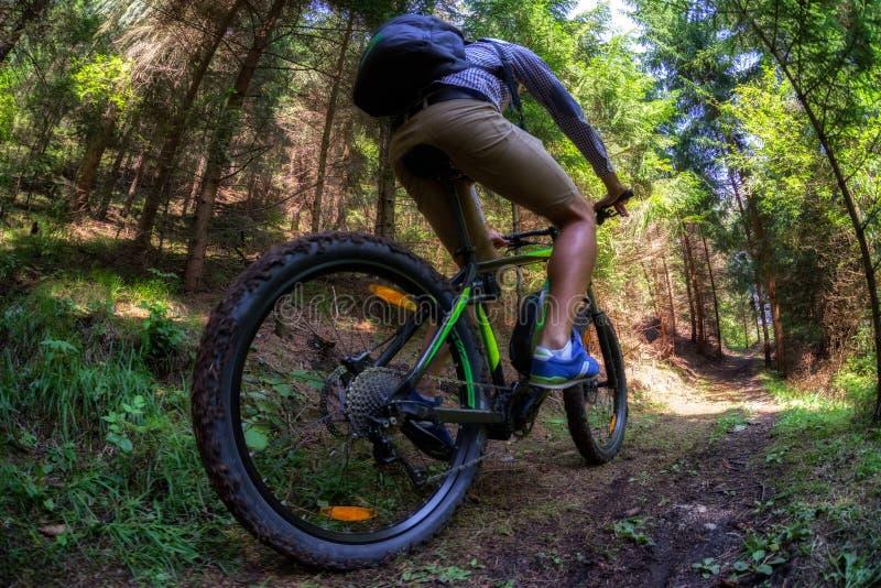 Homem na bicicleta de montanha de eletro fotografia de stock royalty free
